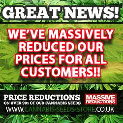 Discreet Delivery on - Sensi - Marley's Collie Regular Seeds