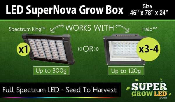 LED Super Nova with Super Grow LED