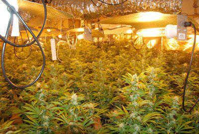 how to setup a hydroponic grow room
