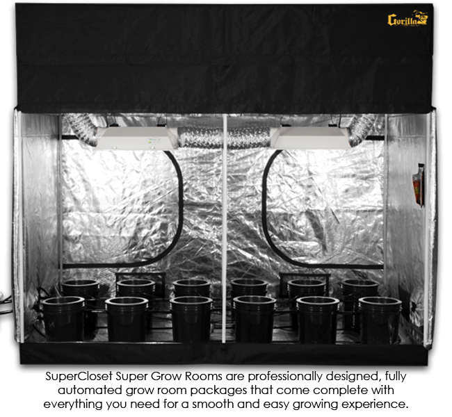 5 x 9 Hydroponic grow tent kit inside
