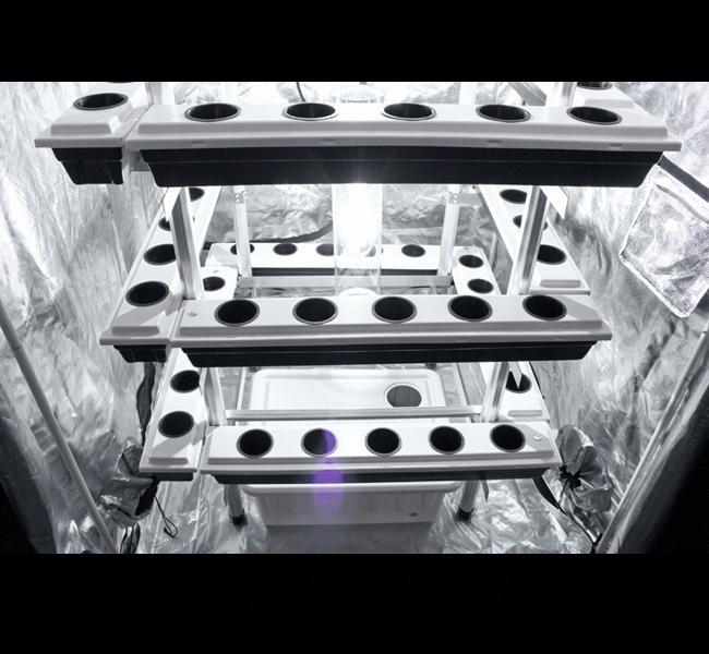 Buddha Box 5 x 5 VerticalPonics System