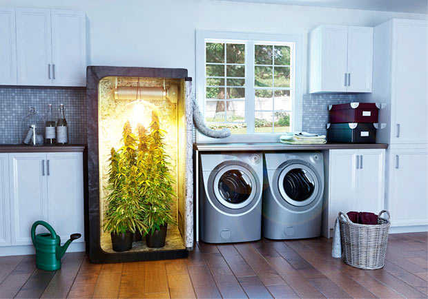 Stealth Grow Pc Grow Box Hydro Grow Weed Box Grow 420 Marijuana