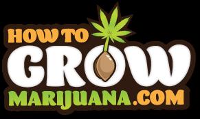 howtogrowmarijuana.com logo