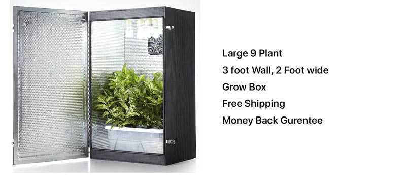 grandmas secret garden grow box