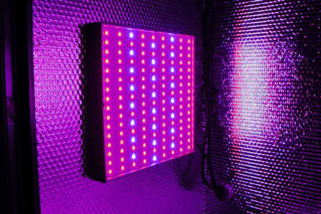 Stacker LED grow box cabinet light