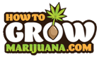 How to Grow Marijuana | Grow Weed Indoors