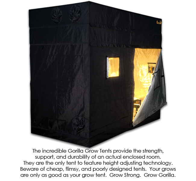 Mortgage lifter 3 Gorilla Grow Tent