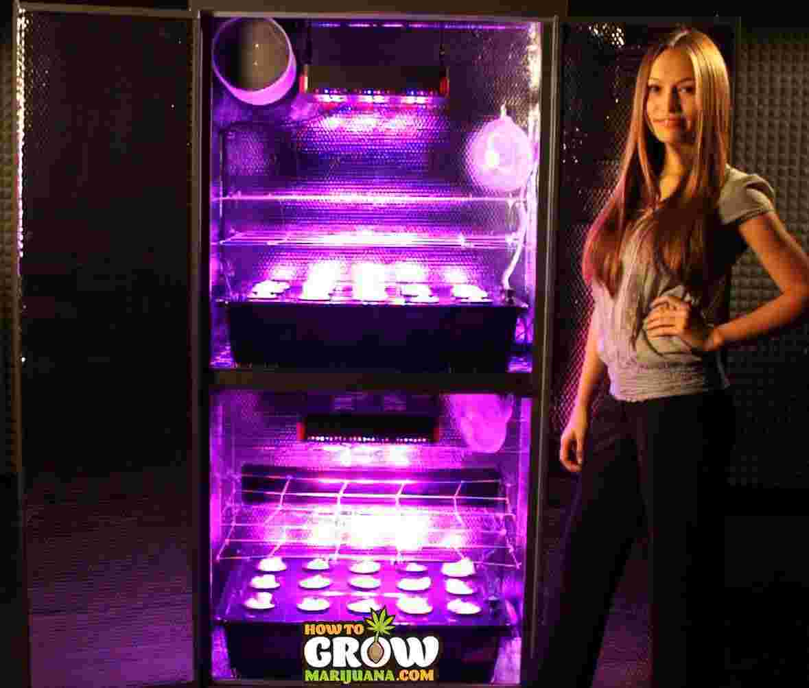 stacker-hydro-grow-box