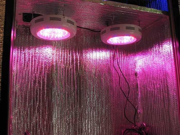 Stealth Box Supreme LED's