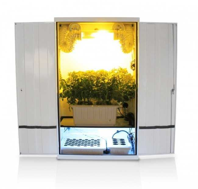 Sunrunner Hydroponic grow cabinet open with lights