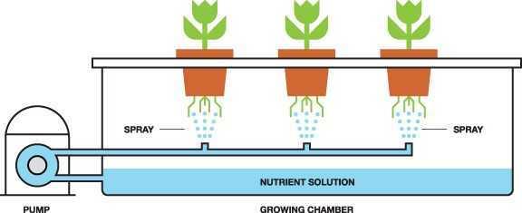 Aeroponics Grow Systems
