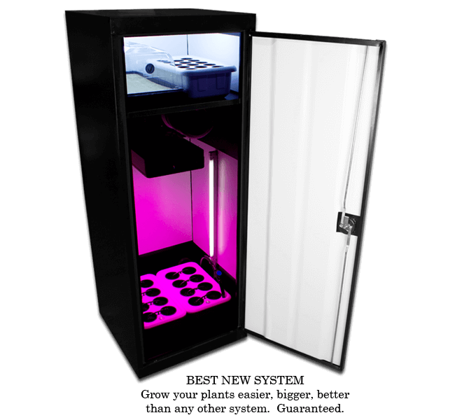 LED Super Star Grow Box Review