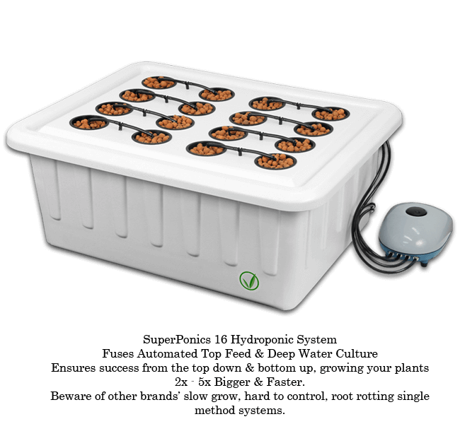 SuperPonics 16 Site Hydroponic System