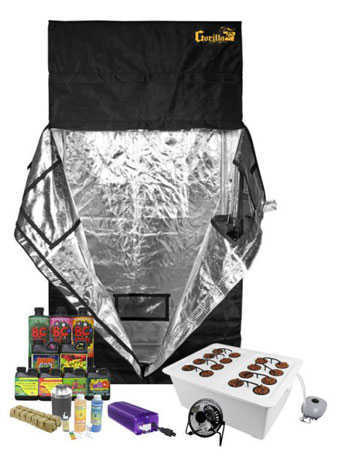 2 x 4 Grow Tent Kit Complete Kit  sc 1 st  How to Grow Marijuana & 2 X 4 Grow Tent Kit Review