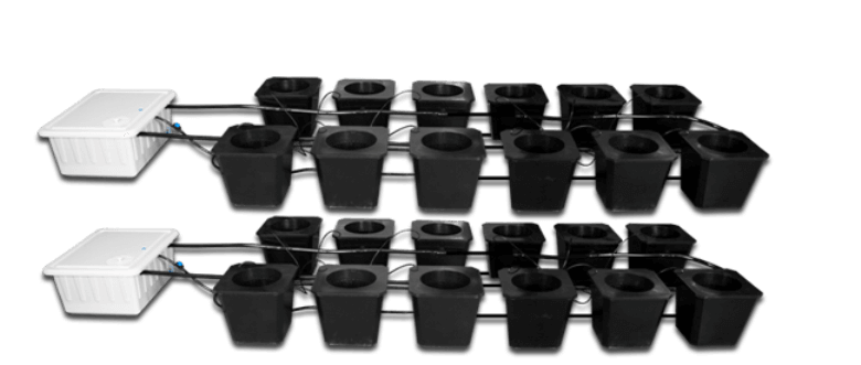 24 site bubble flow bucket system hydroponics