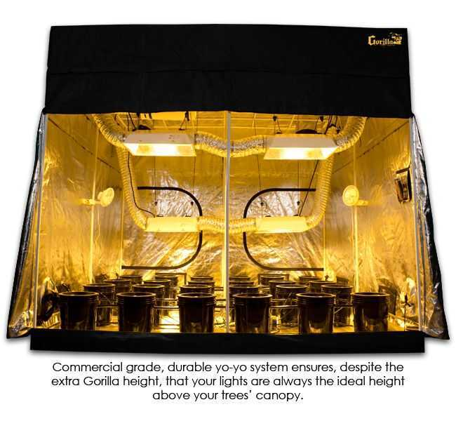 9 x 9 grow tent kit yoyo lights