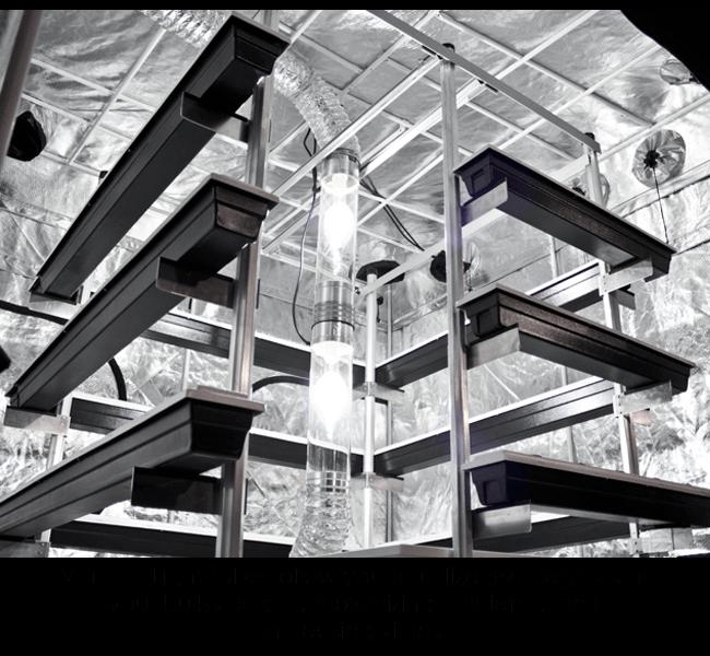 Big Buddha Box Vertical Light Tube