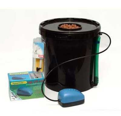 Deep Water Culture Dwc Hydroponic Systems