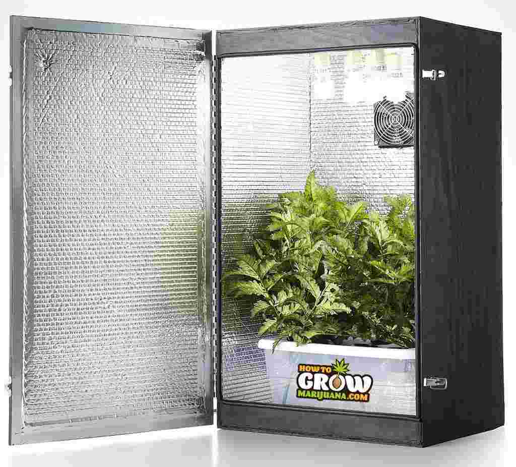 Small Secret Grow Room