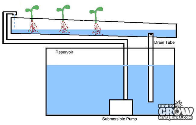Continuous Flow Hydroponic System