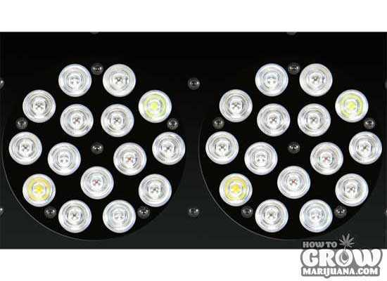 Growblu-Apollo-240X3W-LED-Lenses