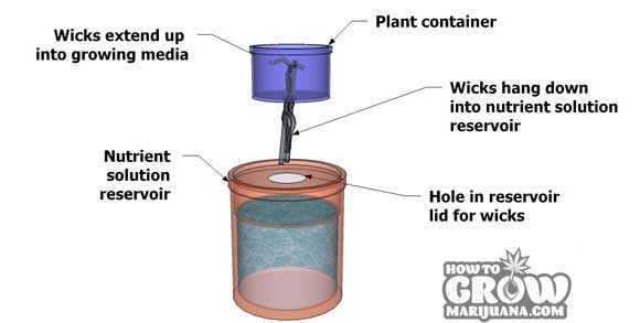 Hydroponic Wick System Plans
