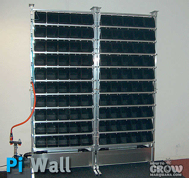 Pi Wall Vertical Hydroponics System for Marijuana