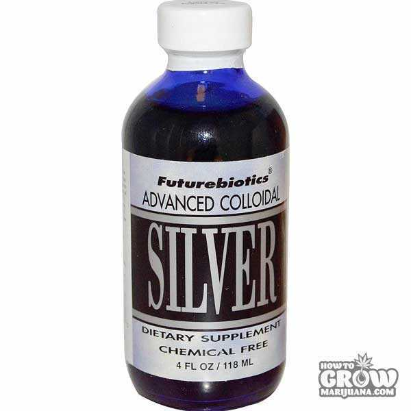 Colloidal Silver to Induce Hermaphrodite