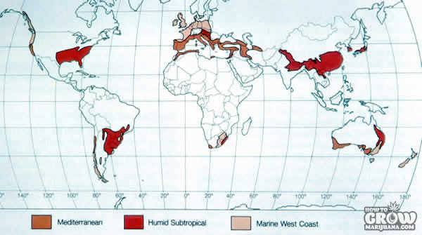 Humid Subtropical Zones