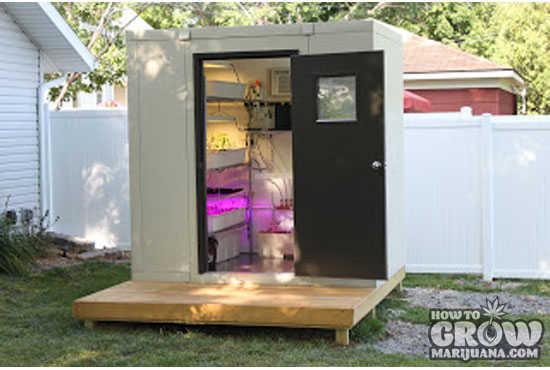 best stealth marijuana seeds. Black Bedroom Furniture Sets. Home Design Ideas