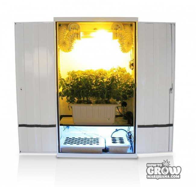 Stealth hydroponic grow box