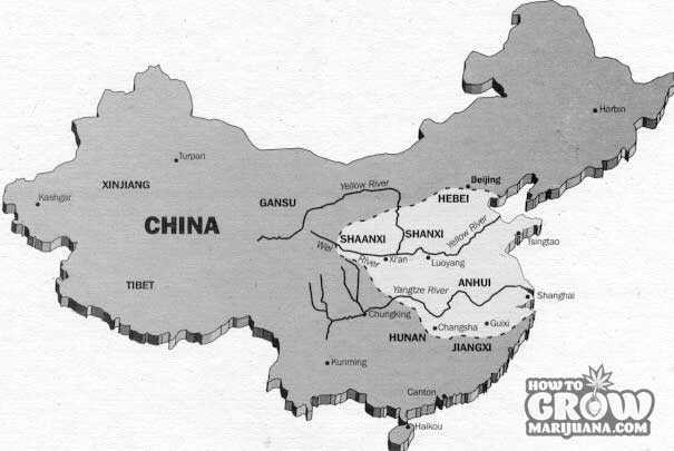 The Region of Eastern China where Cannabis Sativa was Grown by 200 B.C.