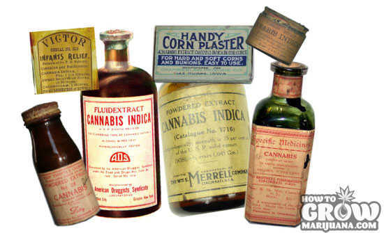 Old Time Cannabis Medicine