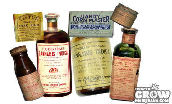 Marijuana Chemicals Cannabinoids Terpenes Flavonoids