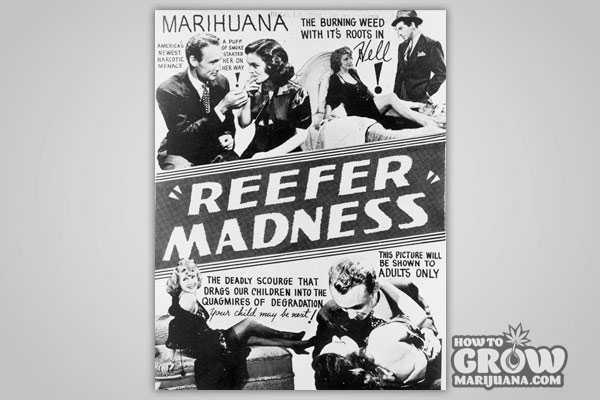 Propaganda Marijuana deemed Harmful without Evidence