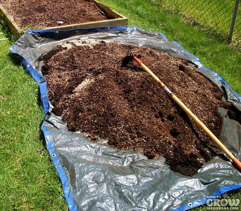 Super Soil Grows Bigger Buds