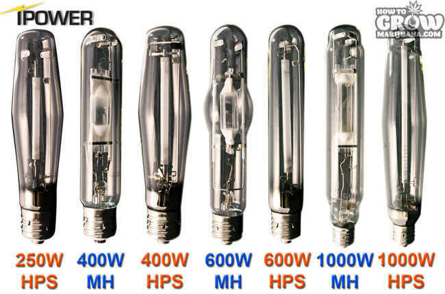 iPower Grow Light Bulbs
