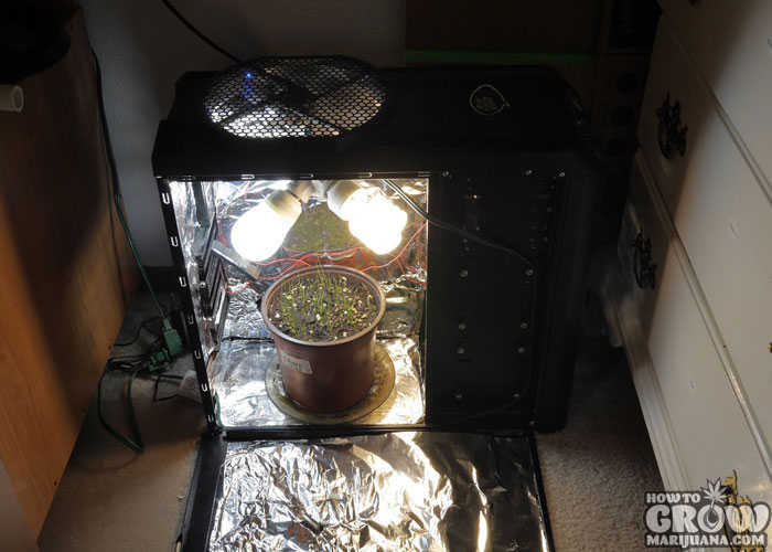 DIY Marijuana PC Grow Box