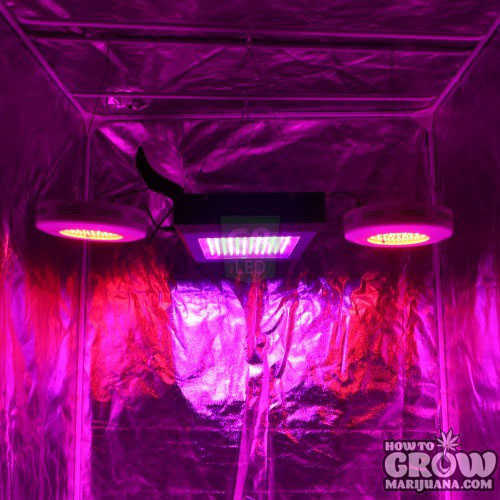 Dorm Grow LED with 90W Red UFOs