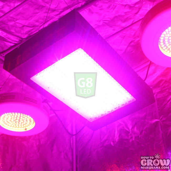 G8 LED Dorm Grow Lights