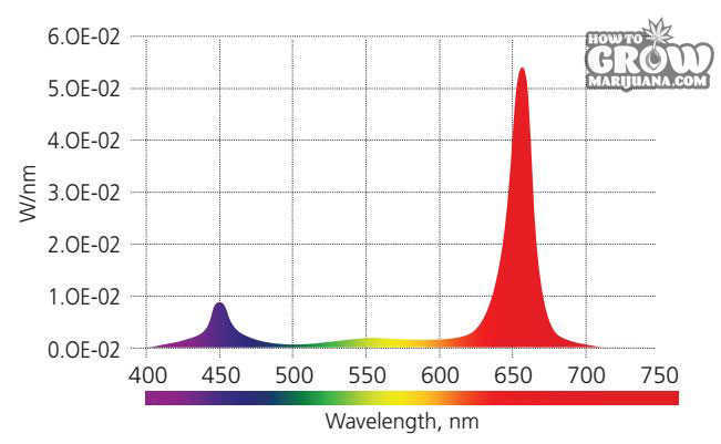 NeoSol DS Spectrum Graph