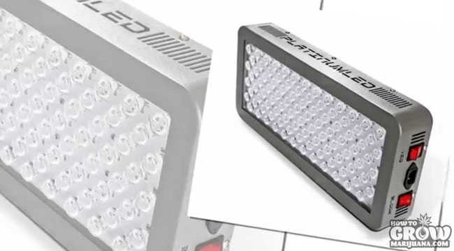 Platinum LED Grow Lights