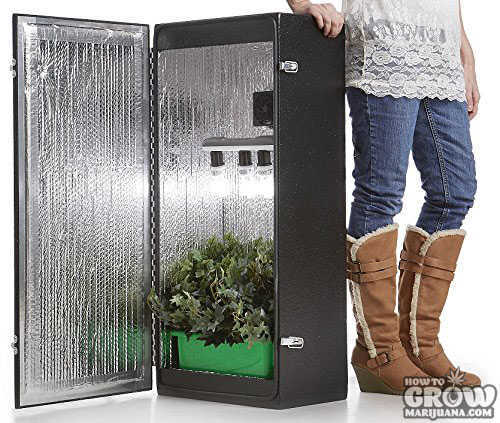Dealzer-Cash-Crop-4.0-Grow-Box
