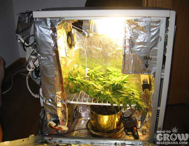 PC Grow Box DIY