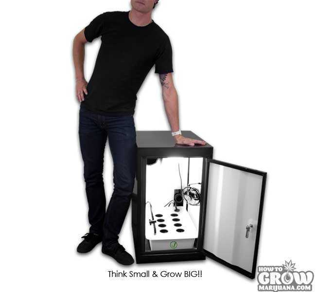 SuperBox Stealth Grow Box