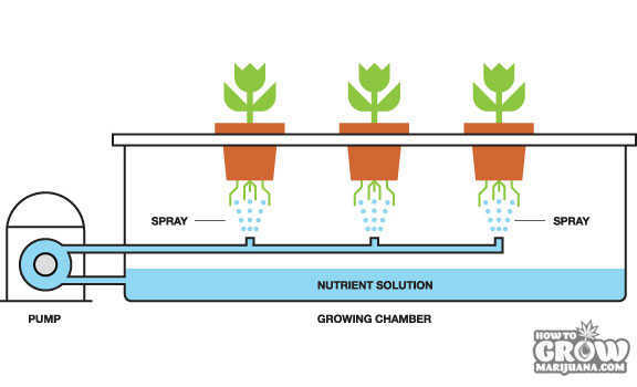 Aeroponics Grow Design