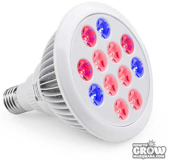 TaoTronic - E27 – 12W Light Bulb 3