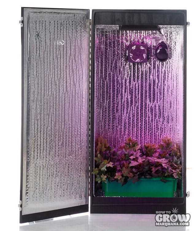 Cash Crop 5.0 Grow Box