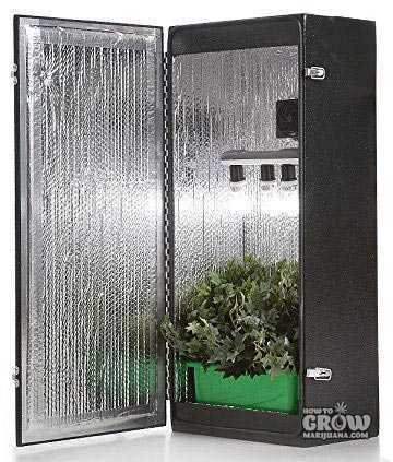 Dealzer Cash Crop 4.0 Grow Box