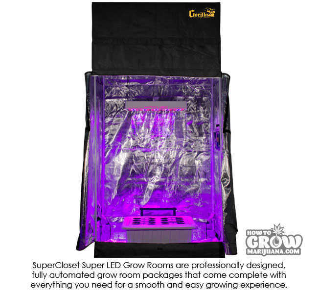 ... SuperCloset SuperRoom Grow Tent Kit  sc 1 st  How to Grow Marijuana : weed grow tent kit - memphite.com